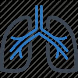 2 ud af 3 lungepatienter tager deres inhalationsmedicin forkert
